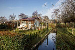 VTV Streven naar Verbetering, groot deel met sloop bedreigd,roofvogels Diergaarde Blijdorp  Rotterdam 2020